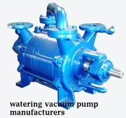 Hire Consultant Before Buying Watering Vacuum Pump