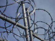Razor barbed wire tape manufacturer in Delhi