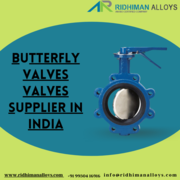 Butterfly Valves Supplier in India
